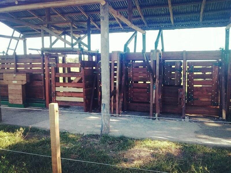 instalaciones para manejo de hacienda y corrales para ganado