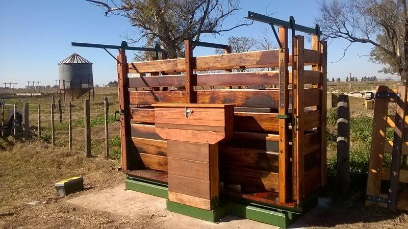 balanza mecanica para ganado de 1,5 tn rincon del norte